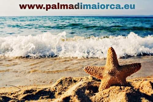 Palma de Mallorca spiagge isole Baleari